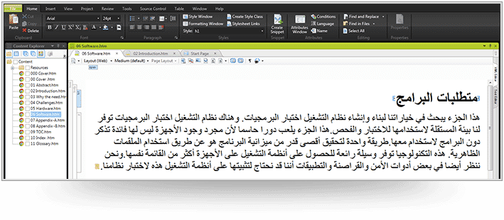 screenshot-FlareTranslationExample