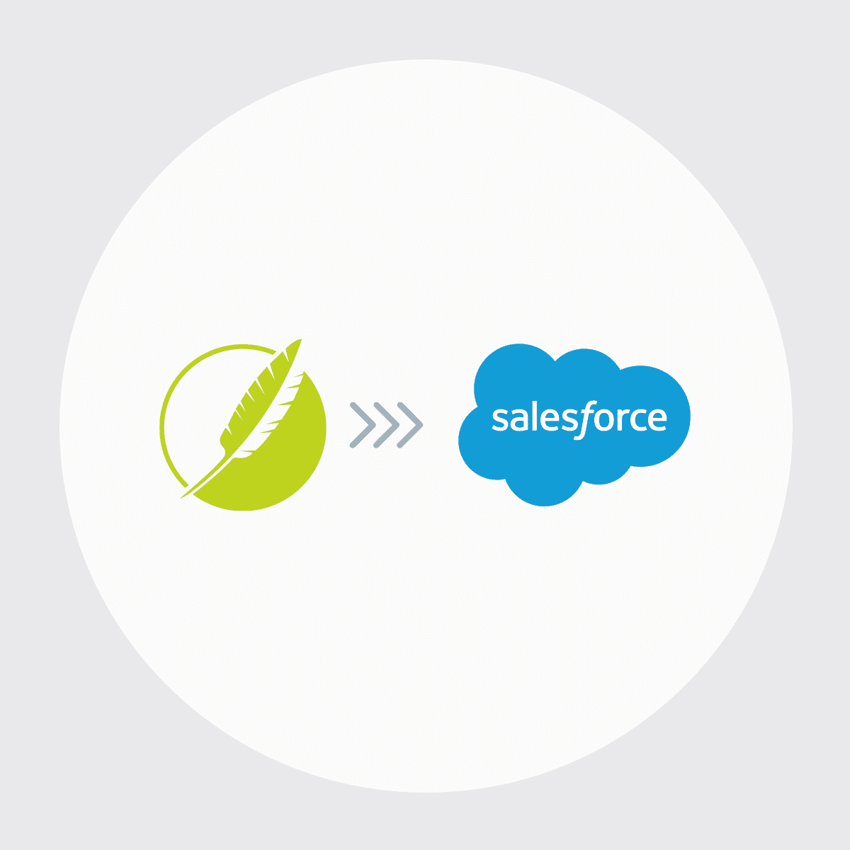 MadCap Connect for Saleforce Icon